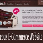 20 Gorgeous E-Commerce Websites Designs
