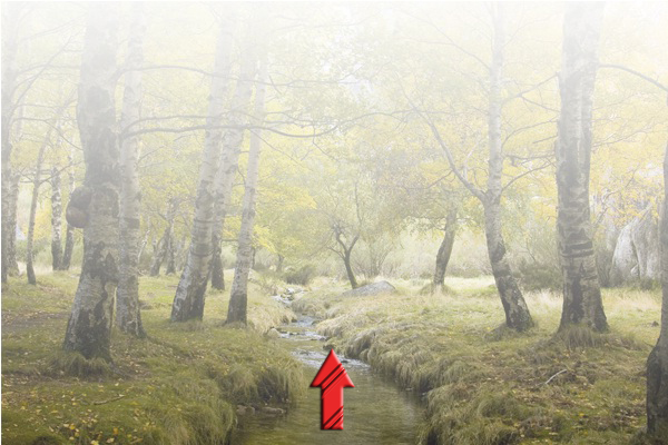 Learn How to Create Water Reflection and Fog Effect in Photoshop