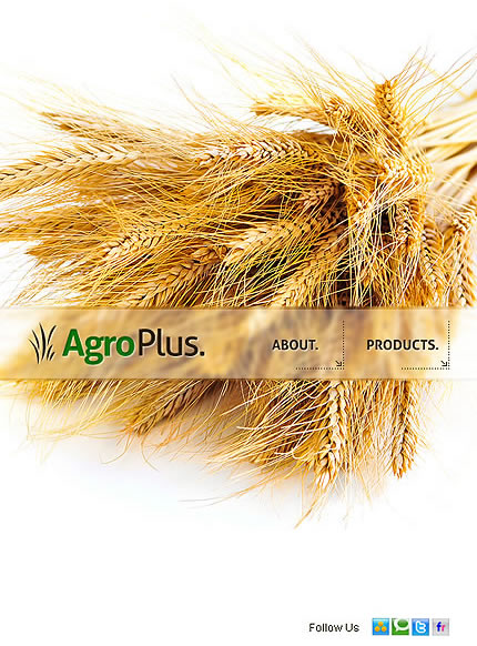 Agro Plus Facebook Template