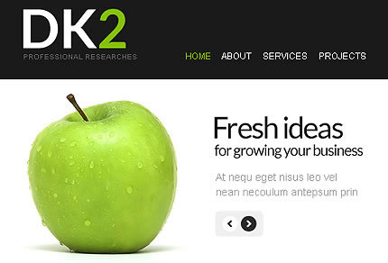 Dk2 Business Facebook Template
