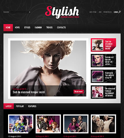 Stylish Fashion WordPress Theme