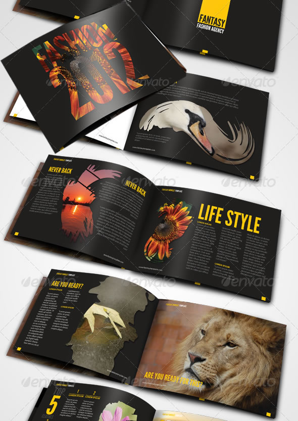 Professional Catalogue Booklet Design Templates Entheos - Fancy brochure templates