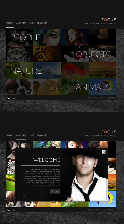 Focus Photo Flash Website Template