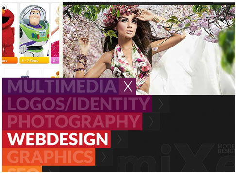 Mixed Studio Flash Website Template