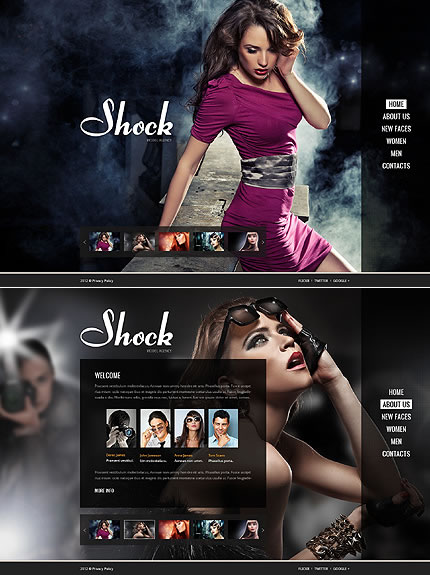 Shock Models Flash Website Template