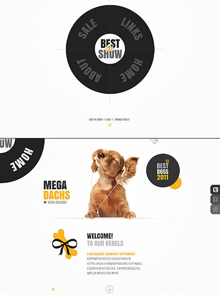 Best In Website Template