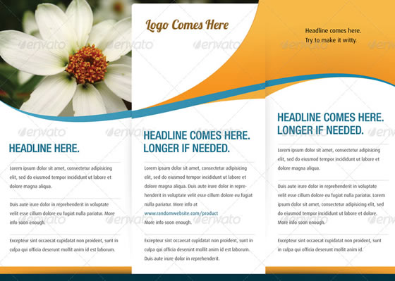 creative tri fold brochure design templates entheos