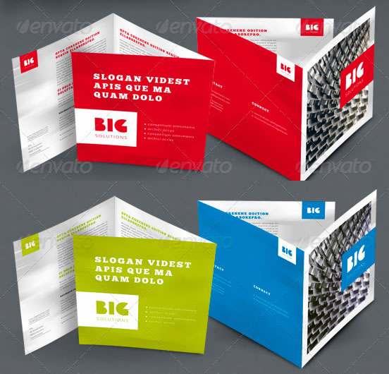 Professional Corporate Brochure
