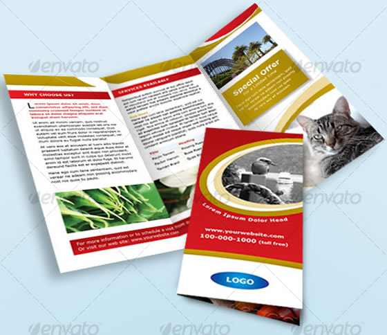 Tri-fold Red and Gold Brochure/Leaflet