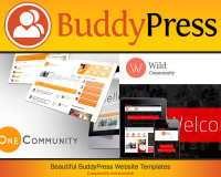 Beautiful BuddyPress Website Templates