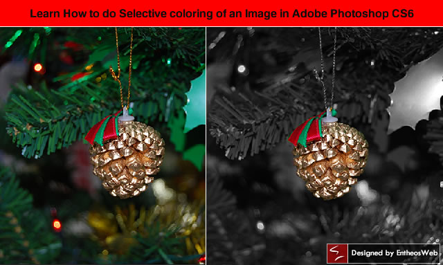 Learn How to do Selective coloring of an Image in Adobe Photoshop CS6