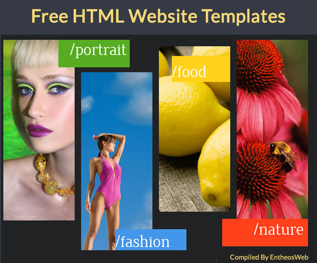 Free HTML5 and CSS3 Website Templates | Entheos