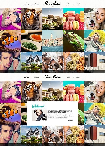 Template 48150 - Sam Born Responsive Website Template