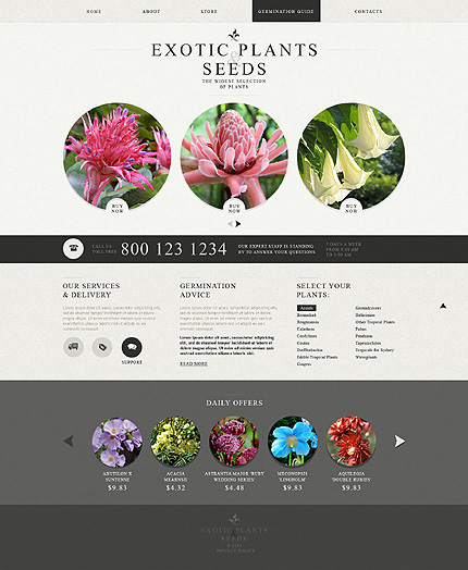 Template 49564 - Exotic Plants Responsive Bootstrap Website Template