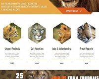 Template 48198 - Wildlife Moto CMS HTML Template