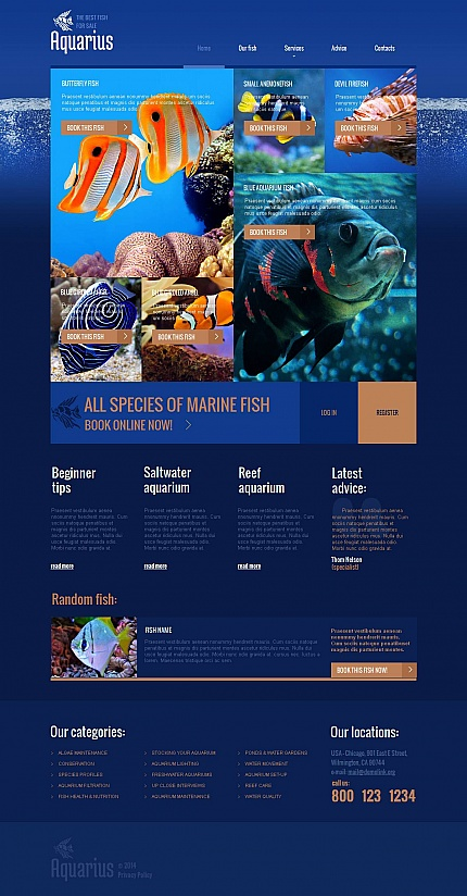 Template 49040 - Aquarium Moto CMS HTML Template
