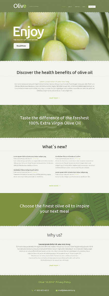 Template 50541 - Olive Oil Responsive Website Template