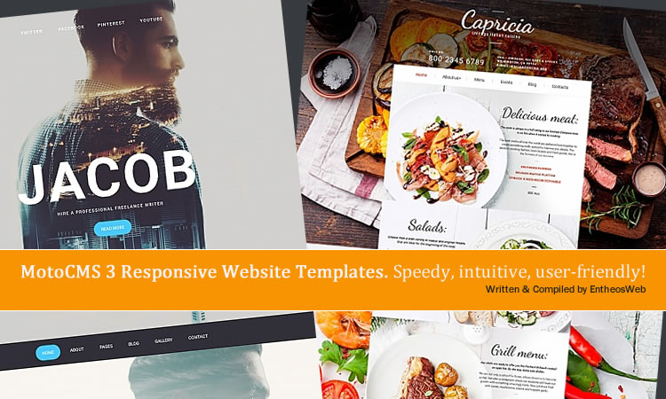 MotoCMS 3 Responsive Website Templates