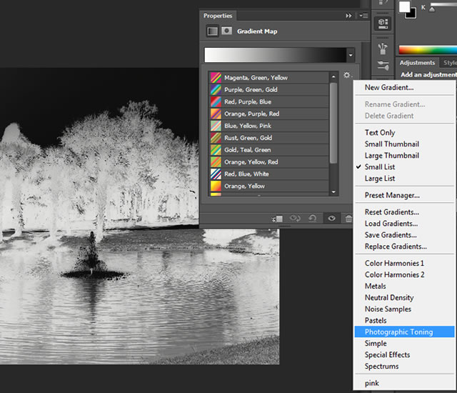 Photographic Toning Techniques