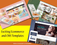 Exciting Ecommerce And CMS Templates