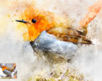 How to create a beautiful watercolor paint effect on any image in Photoshop