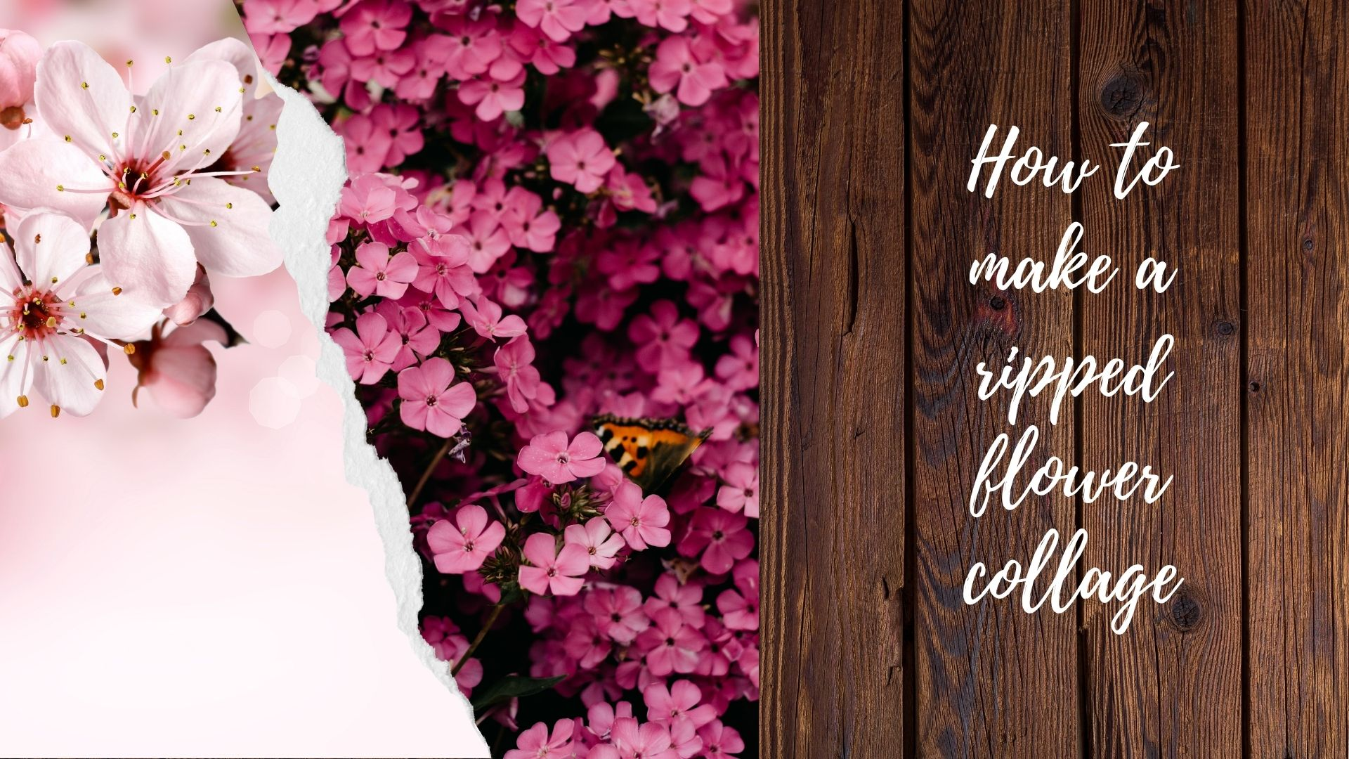 How to Make a Ripped Flower Collage